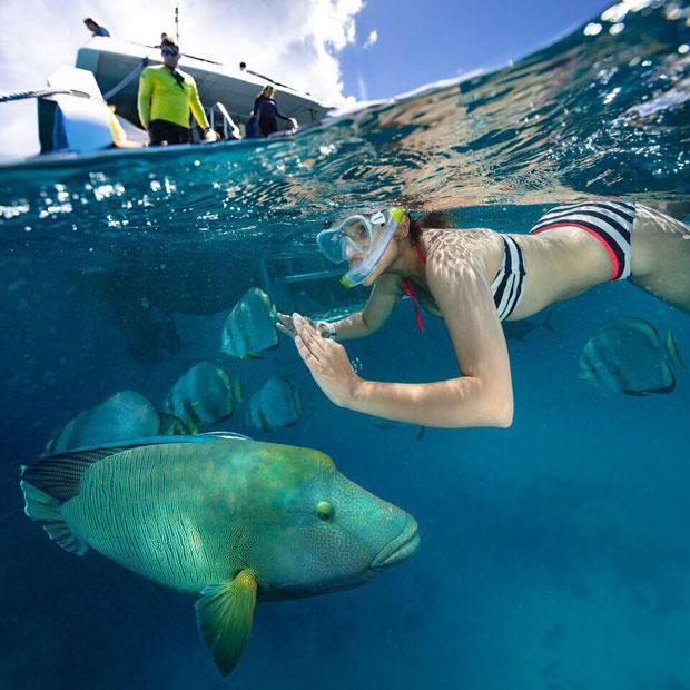 HOT! Parineeti Chopra goes snorkeling in the ocean [See Pics]