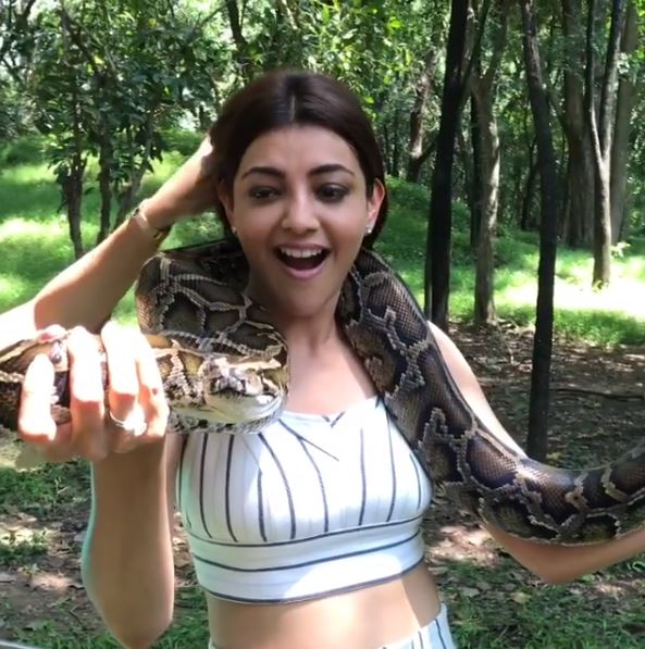 Paris Paris actress Kajal Aggarwal is enjoying her time in Thailand and the Queen actress' daredevilry video will leave you surprised!