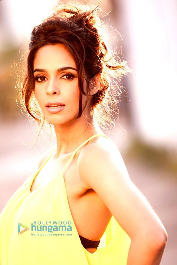 Celebrity Photo Of Mallika Sherawat