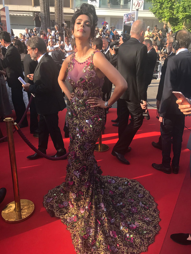 WOW! Mallika Sherawat sizzles in a beautiful gown at the Cannes 2017