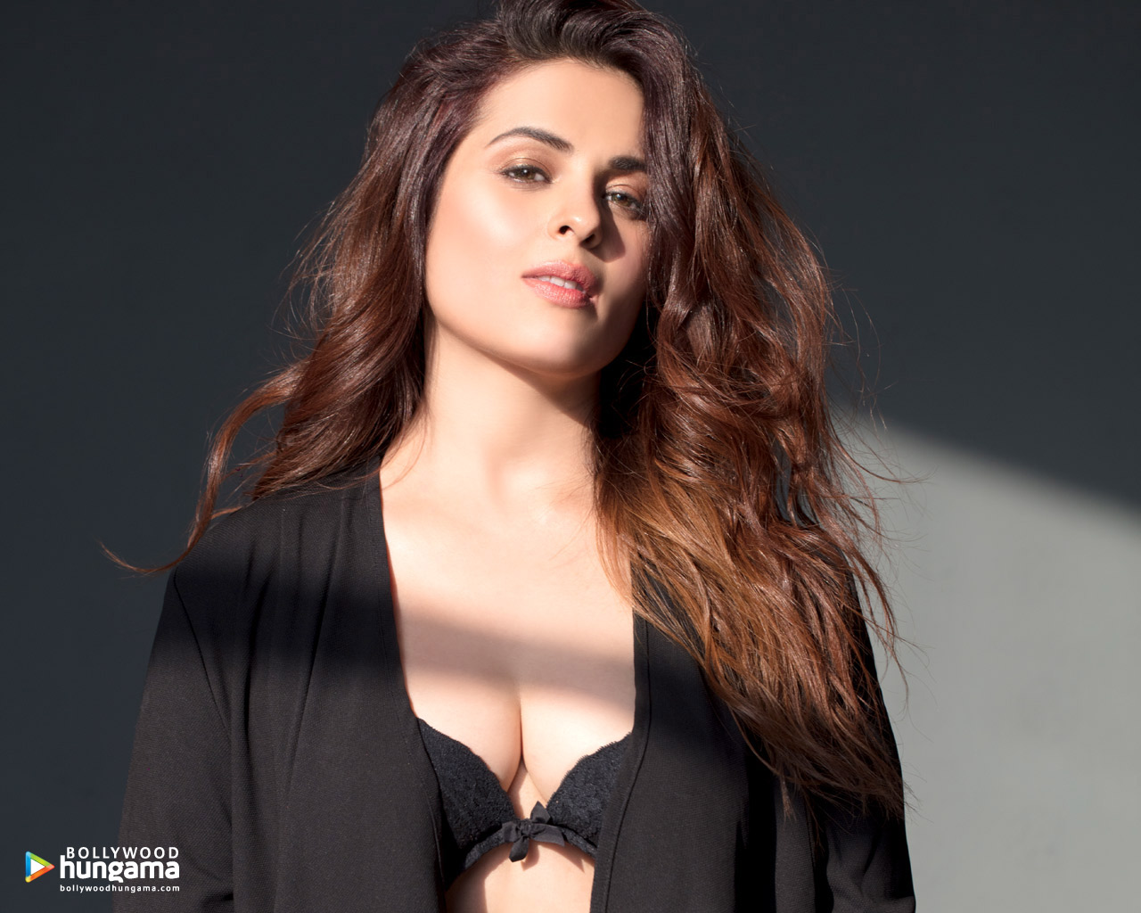 Anjana Sukhani Nude Photos