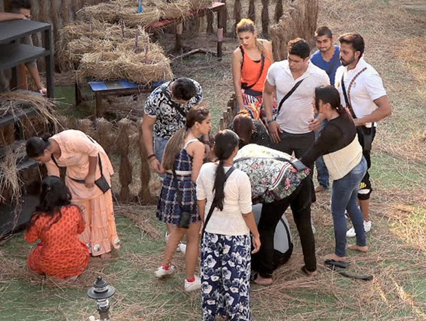 Bigg Boss 12 October 24: Megha Dhade's strategy revealed, Surbhi strangles Dipika