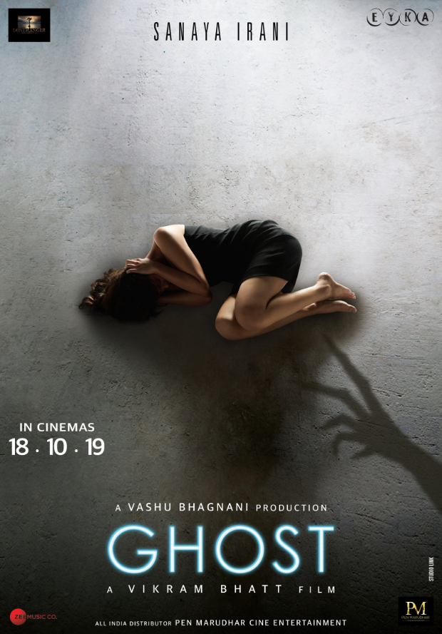 After 1920 And Raaz, Vikram Bhatt Announces His New Film Ghost Starring Sanaya Irani