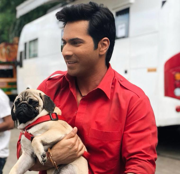 Coolie No. 1: Varun Dhawan has an adorable company on the sets ...