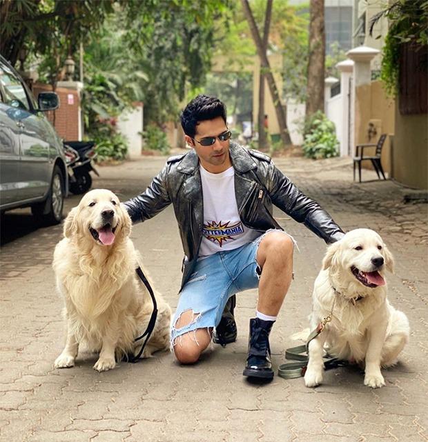 Anushka Sharma mocks Varun Dhawan as he posts photos with two dogs ...