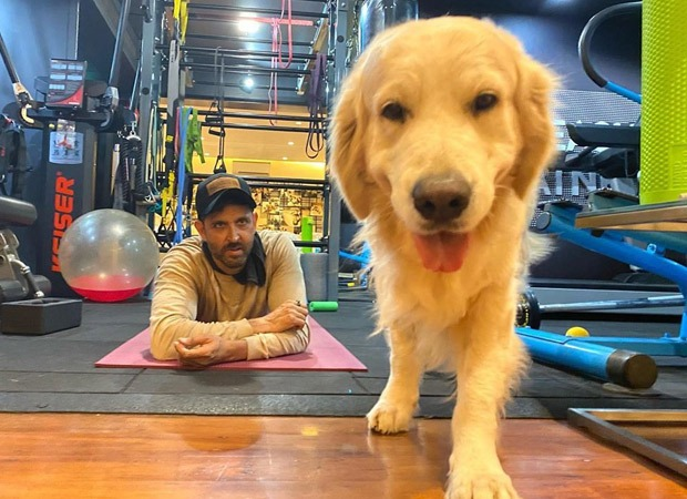 Coronavirus outbreak: Hrithik Roshan's pet dog Zane has an appeal for you