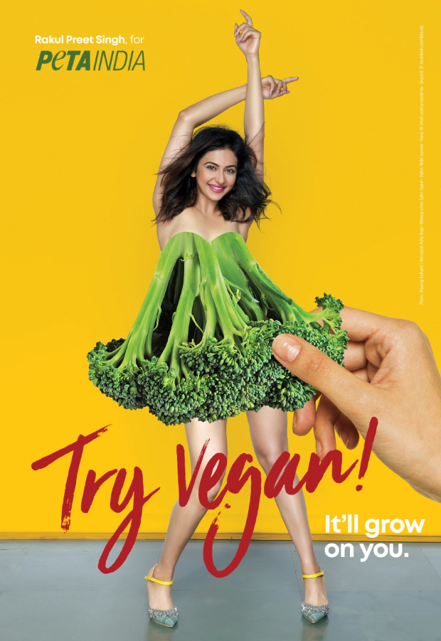 "Rakul Preet Singh encourages fans to ""Try Vegan"" in new PETA ad"