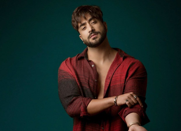 Aly Goni to make his digital debut with Boney Kapoor's Zidd, passes on Bigg Boss 14